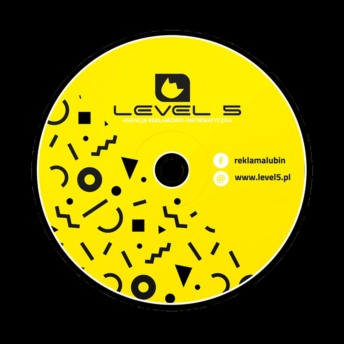 Nagranie danych na 100 płyt CD/DVD